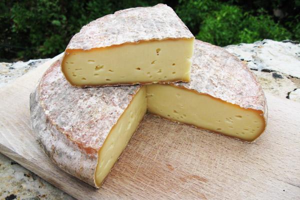 Saint-Nectaire fromage de vache AOP AOC